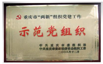 中共重庆市委组织部示范党组织