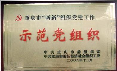 协和接受重庆市委组织部党建复查